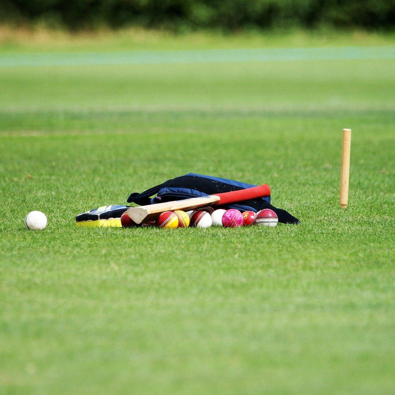 Cricket Cricket Balls Coaching Ball Sport Sports
